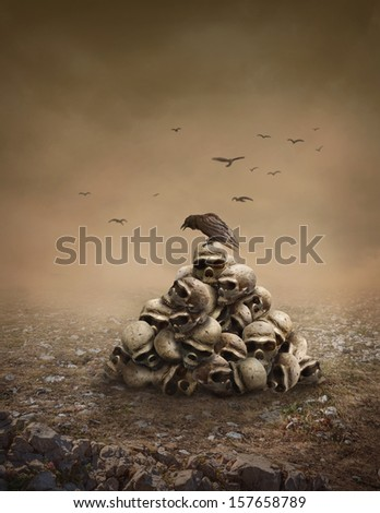 Crow sitting on a pile of sculls - stock photo