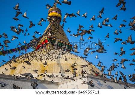 Crowding of pigeons are flying over the great Bodhnath stupa. - stock photo