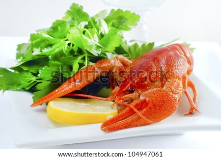 crowfish - stock photo