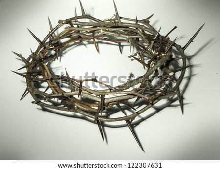 Crown of thorns on white - stock photo
