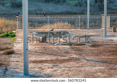 Crows sitting on the fence in the valley - stock photo