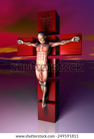 crucificado anatomia - stock photo
