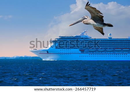 Cruise ship leaving at sunset with pelican in foreground. Freedom! - stock photo