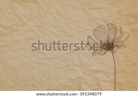 Crumpled paper background with cosmos flower in monochrome, vintage background, grunge background. - stock photo