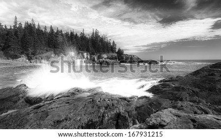 Crushing wave in Acadia national park, in black and white with cloudy sky - stock photo
