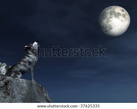 Crying Wolf - stock photo