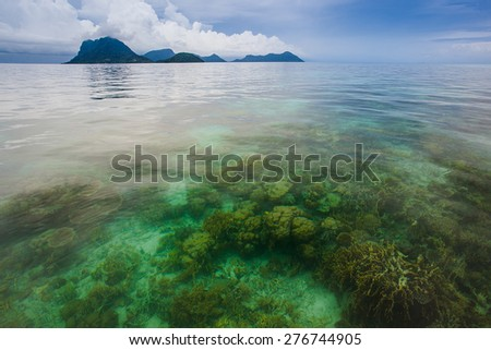 crystal clear sea water allows plants and corals visibly - stock photo