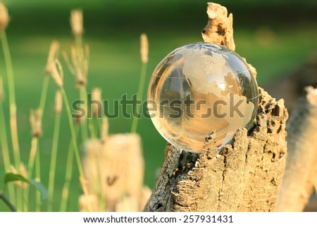 Crystal World with evening sunshine on stump green background. - stock photo