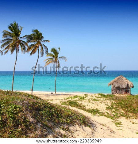 Cuba - Caribbean beach Playa Megano in Playas del Este part of Havana Province. Sandy coast. Square composition. - stock photo