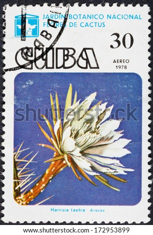 CUBA - CIRCA 1978: A postage stamp printed in the Cuba shows blossoming of Harrisia taetra cactus in National botanical garden, circa 1978 - stock photo