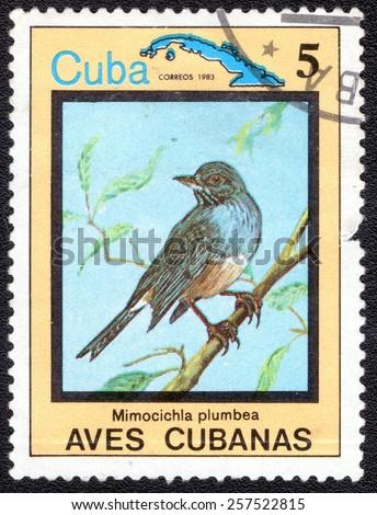 "CUBA - CIRCA 1983:A postage stamp shows Mimocichla plumbea, from series ""Cuban Birds"", circa 1983 - stock photo"