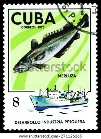 CUBA - CIRCA 1975: a stamp printed by Cuba  show the fish  Hake, series Fishing Industry, circa 1975 - stock photo