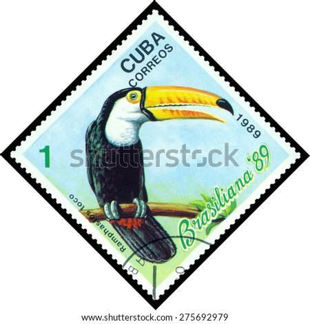 CUBA - CIRCA 1989: A stamp printed by Cuba, shows  bird  Ramphastos Toco, Exotic Birds, Brasiliana 89, circa 1989  - stock photo
