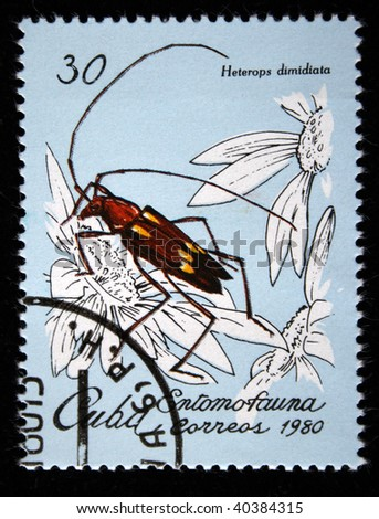 CUBA - CIRCA 1980: A stamp printed by Cuba shows the Bug  Helerops dimidiata, stamp is from the series, circa 1980