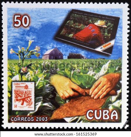 CUBA - CIRCA 2003: A stamp printed in cuba dedicated to Cuban cigars, shows snuff, circa 2003    - stock photo