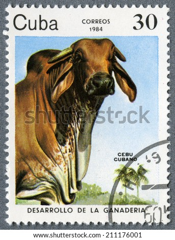 """CUBA - CIRCA 1984: A Stamp printed in CUBA - Grazing Cow, """"Artificial pastures"""" from the series """"Cattle Breeding"""", circa 1984  - stock photo"""