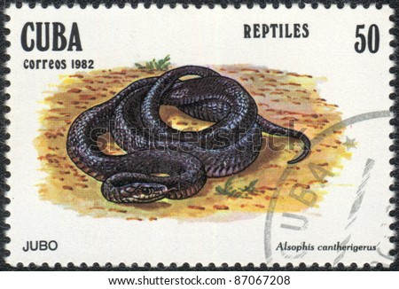 "CUBA - CIRCA 1982: A stamp printed in CUBA  shows  a snake Alsophis cantherigerus - Jubo , series ""Reptilas"", circa 1982 - stock photo"
