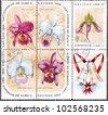 CUBA - CIRCA 1966: A Stamp printed in Cuba shows Cypripedium eurylochus, Cattleya speciosissima, Cattleya mendelii majestica, Cattleya trianae amesiana, Cattleya labiata macfarlanei, circa 1966 - stock photo