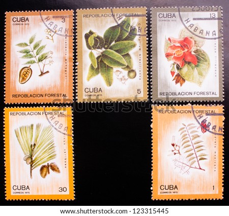 CUBA - CIRCA 1975: A stamp printed in Cuba shows five kinds of colorful plants , circa 1975. - stock photo