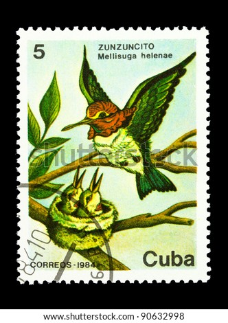 "CUBA - CIRCA 1984: A Stamp printed in CUBA shows image of a Hummingbird with the description ""Mellisuga helenae"" from the series ""Fauna"", circa 1984"