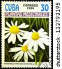 "CUBA - CIRCA 1994: A stamp printed in Cuba shows Matricaria chamomilla plant, with the same inscription, from the series ""Medicinal plants"", circa 1994 - stock photo"