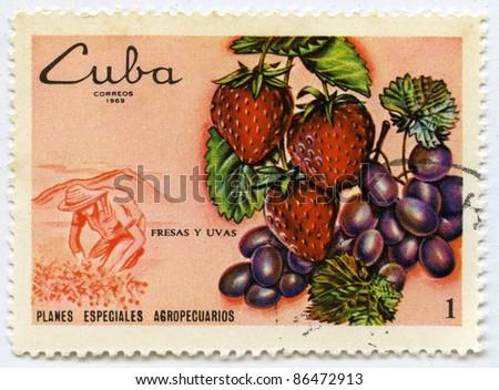 CUBA - CIRCA 1969: A stamp printed in Cuba, shows strawberries and grapes, circa 1969 - stock photo