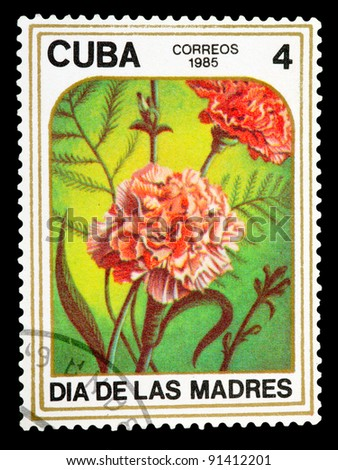 CUBA - CIRCA 1985: A stamp printed in CUBA shows Two carnations , circa 1985