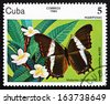 CUBA - CIRCA 1984: a stamp printed in the Cuba shows Victorina, Amphirene Superba, Butterfly, circa 1984 - stock photo