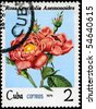 "CUBA - CIRCA 1979: A Stamp shows image of a pink Rose with the inscription ""rosa  centifolia anemonoides"", series, circa 1979 - stock photo"