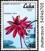 "CUBA - CIRCA 1979: A Stamp shows image of a Red Nymphaea with the inscription ""Nymphaca rubra"", from the series ""aquatic flowers"", circa 1979 - stock photo"