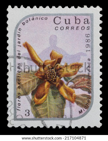 CUBA - CIRCA 1986: stamp printed in Cuba, shows image Michelia Champaca from series exotic flowers in botanical gardens , circa 1986 - stock photo