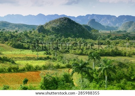 Cuba nature - Vinales National Park. Filtered style. - stock photo