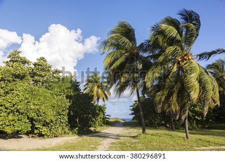 Cuba, Varadero beach - stock photo