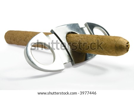 cuban hand-rolled cigars on white - stock photo