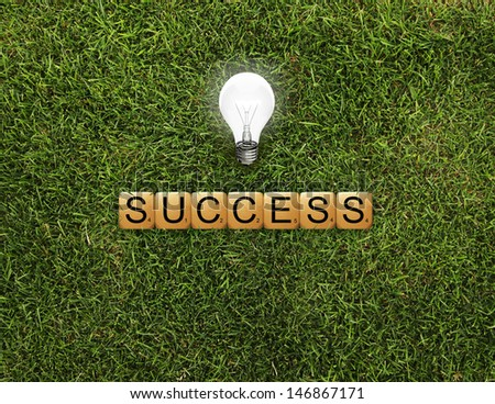 cubes crossword success on grass and lamp - stock photo