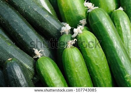 Cucumber and zucchini close up - stock photo