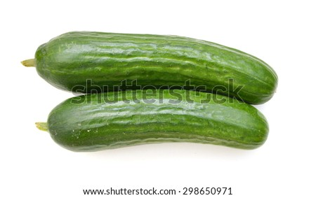 Cucumber isolated on white background - stock photo