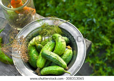 Cucumber pickled with dill and garlic on wooden table.Photo tinted. - stock photo