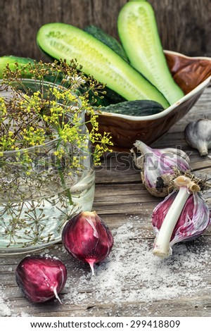 Cucumber pickled with dill and garlic on wooden table.Selective focus - stock photo
