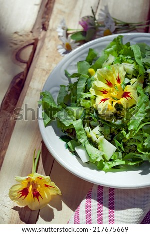 Cucumber salad with lettuce and boiled eggs, country style photo, natural outdoor lighting. Toned photo.  - stock photo