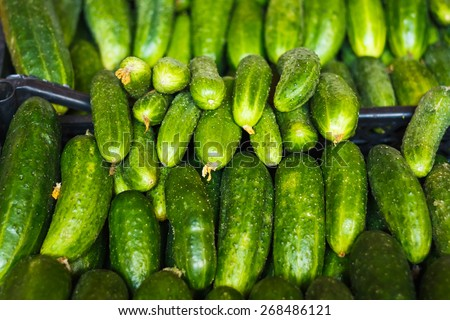 Cucumbers Bunched Together For Sale At Market Good