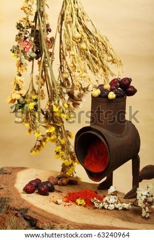 Culinary still-life with handmill, spice and twigs of dry flowers - stock photo