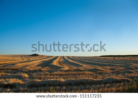 Cultivated field at sunset, solitude and hard work - stock photo