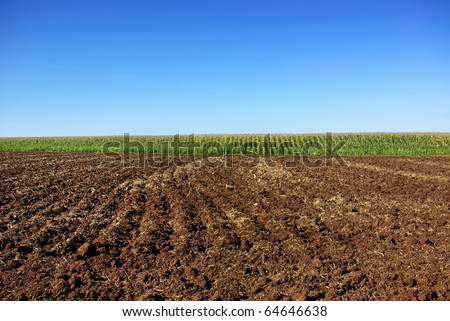 Cultivated field background. - stock photo