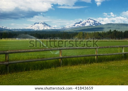 Cultivated field with Mount St.Helen on background - stock photo