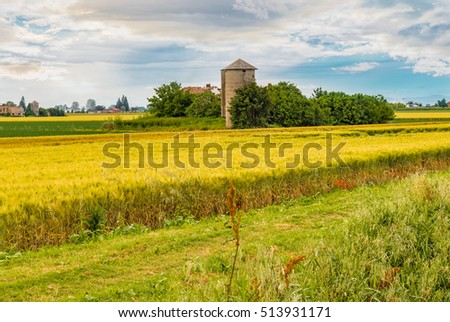 cultivated fields in Italian countryside