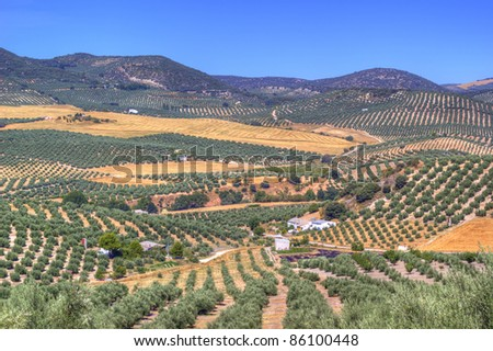 Cultivated fields in Spain, La Mancha