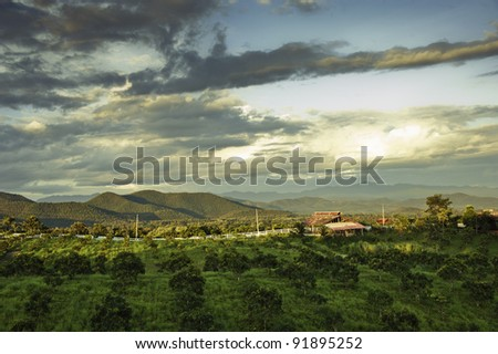 Cultivated land in a rural landscape at sunset - stock photo