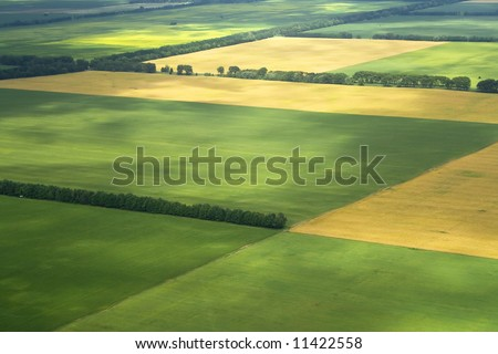 cultivation farm agriculture fields landscape with green blocks as zoning land