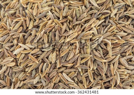 Cumin - caraway - seeds on background